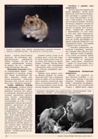 Газета СУРОК.ИНФО №5 (42), 2013 г., стр. 2