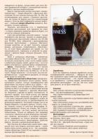 Газета СУРОК.ИНФО №5 (42), 2013 г., стр. 7