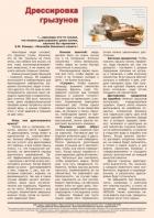 Газета СУРОК.ИНФО №5 (42), 2013 г., стр. 10