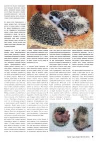 Газета СУРОК.ИНФО №6 (16), 2010 г., стр. 7