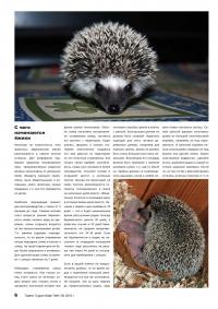 Газета СУРОК.ИНФО №6 (16), 2010 г., стр. 6