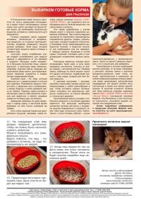 Газета СУРОК.ИНФО №6 (26), 2011 г., стр. 8