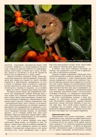 Газета СУРОК.ИНФО №6 (33), 2012 г., стр. 2