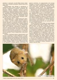 Газета СУРОК.ИНФО №6 (33), 2012 г., стр. 3