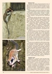 Газета СУРОК.ИНФО №6 (33), 2012 г., стр. 4