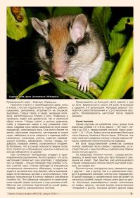 Газета СУРОК.ИНФО №6 (33), 2012 г., стр. 5