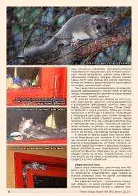 Газета СУРОК.ИНФО №6 (33), 2012 г., стр. 6