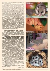 Газета СУРОК.ИНФО №6 (33), 2012 г., стр. 7