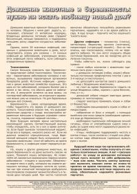 Газета СУРОК.ИНФО №6 (33), 2012 г., стр. 10