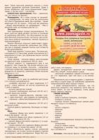 Газета СУРОК.ИНФО №6 (43), 2013 г., стр. 5