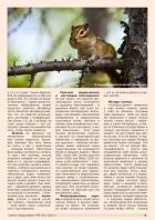 Газета СУРОК.ИНФО №6 (43), 2013 г., стр. 9