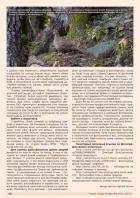 Газета СУРОК.ИНФО №6 (43), 2013 г., стр. 10