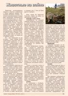 Газета СУРОК.ИНФО №6 (43), 2013 г., стр. 11