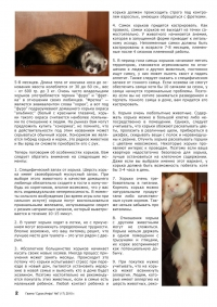 Газета СУРОК.ИНФО №7 (17), 2010 г., стр. 2