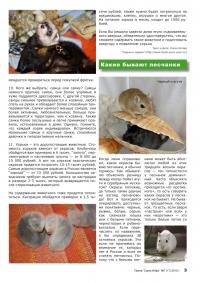 Газета СУРОК.ИНФО №7 (17), 2010 г., стр. 3