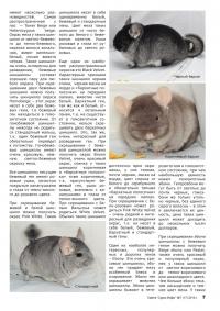 Газета СУРОК.ИНФО №7 (17), 2010 г., стр. 7