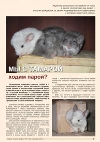 Газета СУРОК.ИНФО №7 (27), 2011 г., стр. 5