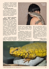 Газета СУРОК.ИНФО №7 (27), 2011 г., стр. 3