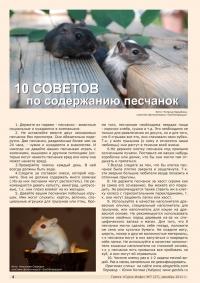 Газета СУРОК.ИНФО №7 (27), 2011 г., стр. 4