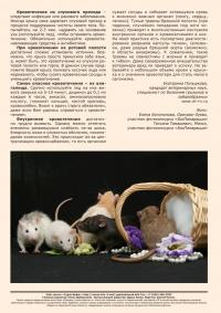 Газета СУРОК.ИНФО №7 (27), 2011 г., стр. 8