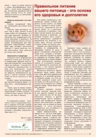Газета СУРОК.ИНФО №7 (34), 2012 г., стр. 7