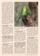 Газета СУРОК.ИНФО №7 (44), 2013 г., стр. 2