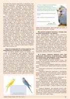 Газета СУРОК.ИНФО №7 (44), 2013 г., стр. 3