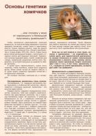 Газета СУРОК.ИНФО №7 (44), 2013 г., стр. 5