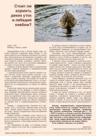 Газета СУРОК.ИНФО №7 (44), 2013 г., стр. 7