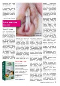 Газета СУРОК.ИНФО №8 (18), 2010 г., стр. 7