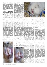 Газета СУРОК.ИНФО №8 (18), 2010 г., стр. 8