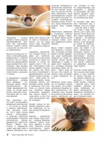 Газета СУРОК.ИНФО №8 (18), 2010 г., стр. 2