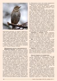 Газета СУРОК.ИНФО №8 (35), 2012 г., стр. 4