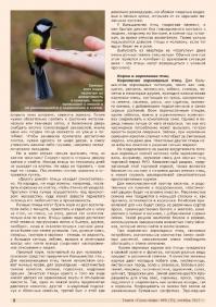 Газета СУРОК.ИНФО №8 (35), 2012 г., стр. 6