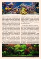 Газета СУРОК.ИНФО №8 (45), 2013 г., стр. 2