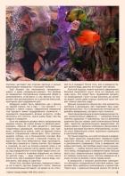 Газета СУРОК.ИНФО №8 (45), 2013 г., стр. 3