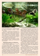 Газета СУРОК.ИНФО №8 (45), 2013 г., стр. 4