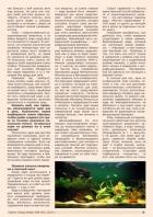 Газета СУРОК.ИНФО №8 (45), 2013 г., стр. 5