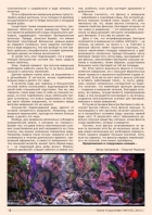Газета СУРОК.ИНФО №8 (45), 2013 г., стр. 6