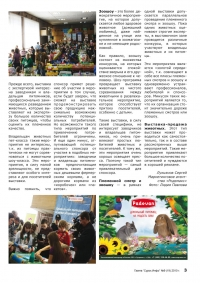 Газета СУРОК.ИНФО №9 (19), 2010 г., стр. 3