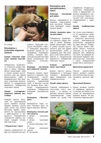 Газета СУРОК.ИНФО №9 (19), 2010 г., стр. 7