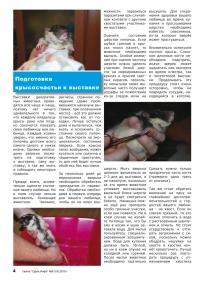 Газета СУРОК.ИНФО №9 (19), 2010 г., стр. 4
