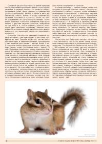 Газета СУРОК.ИНФО №9 (36), 2012 г., стр. 2