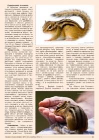 Газета СУРОК.ИНФО №9 (36), 2012 г., стр. 3