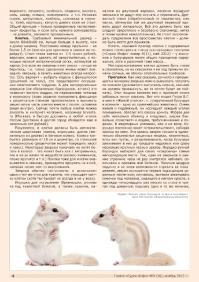 Газета СУРОК.ИНФО №9 (36), 2012 г., стр. 4