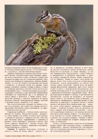 Газета СУРОК.ИНФО №9 (36), 2012 г., стр. 5