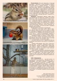 Газета СУРОК.ИНФО №9 (36), 2012 г., стр. 6