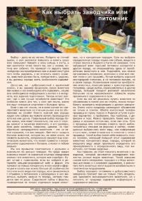 Газета СУРОК.ИНФО №9 (36), 2012 г., стр. 12