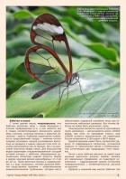 Газета СУРОК.ИНФО №9 (46), 2013 г., стр. 3