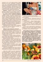 Газета СУРОК.ИНФО №9 (46), 2013 г., стр. 6